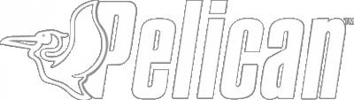 Pelican - Image 38